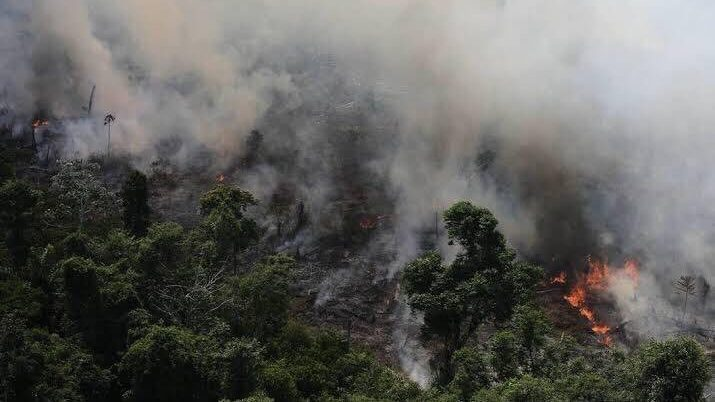 Difunden fake news sobre lluvias en el Amazonas — Una tendencia falsa