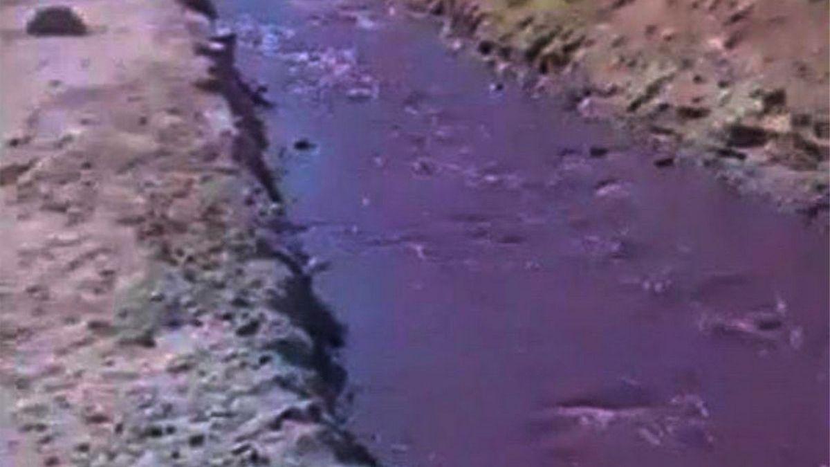 VIDEO. Un río de vino tino recorrió Cafayate